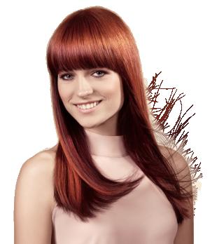 Haare farben kosten friseur